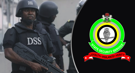 There Are Plots By Some Individuals To Incite Violence In Nigeria – DSS
