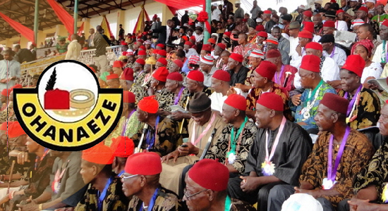 Imo: Ohaneze Ndigbo Speaks After Supreme Court Ruling