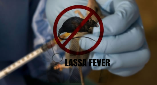 FMC To Develop Lassa Fever Vaccine