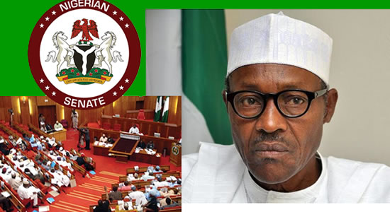Banditry: Senate Applaud Buhari Military Offensive Action In Kastina