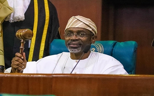 Reps Set To Audit Abandoned FG Projects From 1999 Till Date