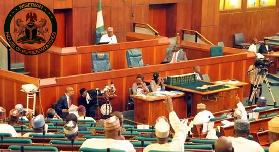 Demand For Cut In Cost Of Governance: Tell The Executive – Reps To Agitators
