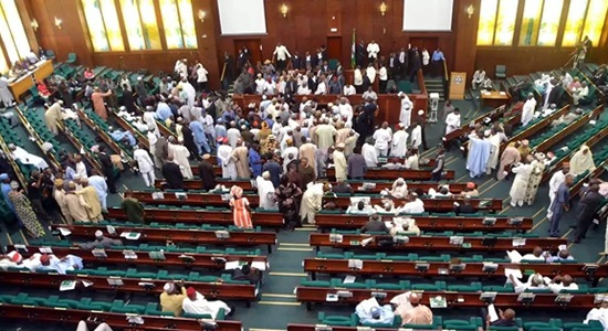 Gender Imbalance: Reps Urge Buhari To Give More Women Opportunity