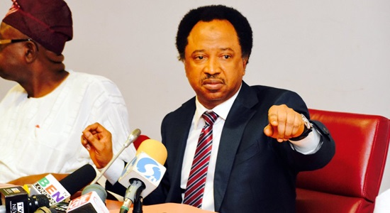 Alleged Extortion: Intimidation Cannot Subdue Me – Shehu Sani