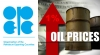OPEC: Oil Price Stable After Successful Engagement
