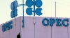 OPEC Discloses Nigeria's Earnings From Petroleum Exports