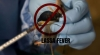 A Patient Dies From Lassa Fever In Kebbi