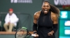 Australian Fire: Serena Williams Donates $43,000 Winner's Cheque To Victims